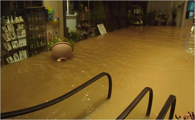 An Idea Born In Tropical Storm Allison Saves Houston