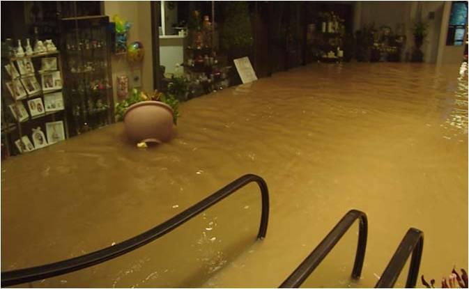 TMC flooding